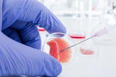 Akademisi UI Teliti Terapi Sel Punca sebagai Solusi Antipenuaan