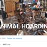 Lebih Jauh tentang Animal Hoarding, Perilaku Orang yang Suka Mengumpulkan Banyak Binatang