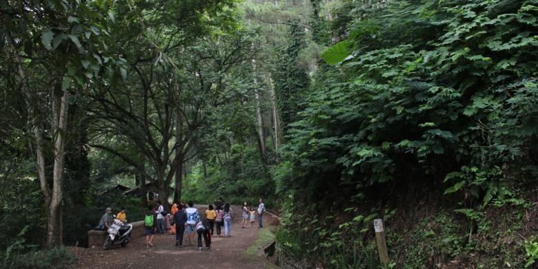 Taman Hutan Raya Ir. H Juanda di Dago Pakar, Bandung