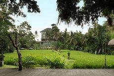 Merasakan Sensasi Menginap di Hotel Mewah di Tengah Sawah Ubud