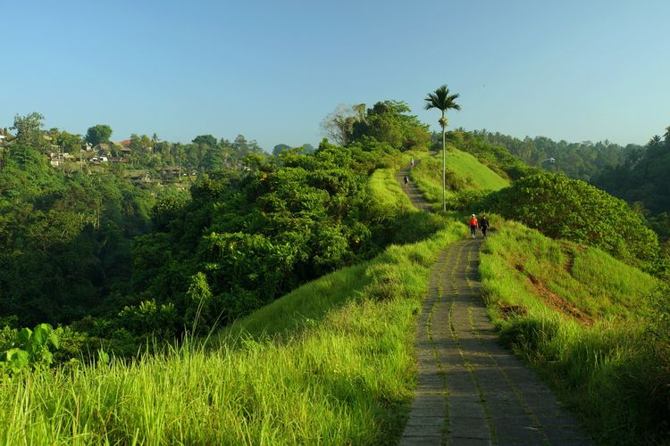 Tjampuhan Ridge Walk begitulah para wisatawan manca negara mengenal Bukit Campuhan, Ubud.