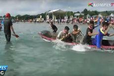 Serunya Bermain Tarik Tambang di Atas Sampan di Danau Toba