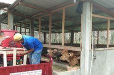 Lewat UPPO, Kementan Dukung Ketersediaan Pupuk Organik bagi Petani
