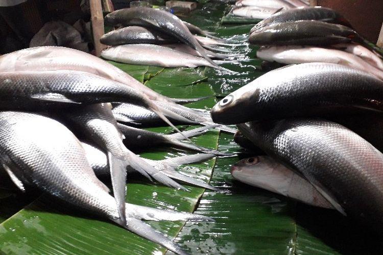 Para penjual ikan bandeng dadakan muncul di Pasar Rawa Belong, Palmerah, Jakarta Barat pada Senin (12/2/2018), jelang perayaan Hari Raya Imlek.