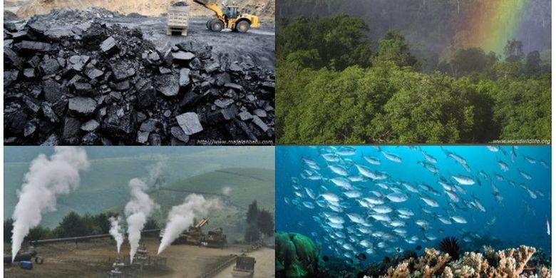 Potensi Sumber Daya Alam Indonesia