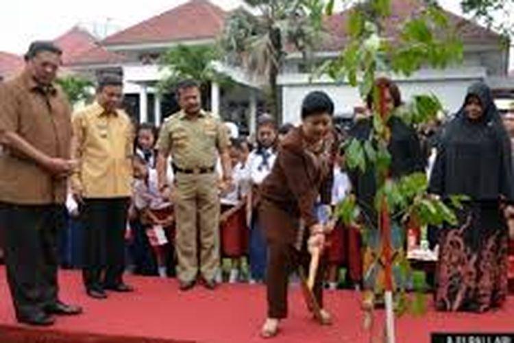 Ani Yudhoyono saat menanam pohon di pendopo rujab wali kota Parepare