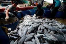 Kenaikan Nilai Ekspor Produk Perikanan RI Bukan Indikasi Kebangkitan Industri Perikanan