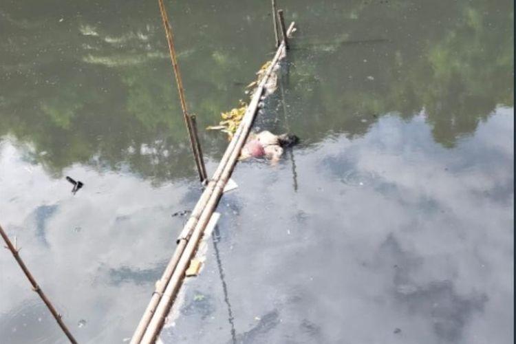 Jenazah seorang laki-laki ditemukan mengambang di Kali Grogol, tepatnya di Jembatan Sampurna, Kecamatan Grogol Petamburan, Jakarta Barat, pada Selasa (15/6/2021) pagi.