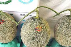 Kenapa Harga Melon di Jepang Mahal?