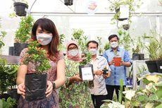 """""""Greenhouse"""", Fasilitas Belajar Melestarikan Lingkungan untuk Anak SD"""