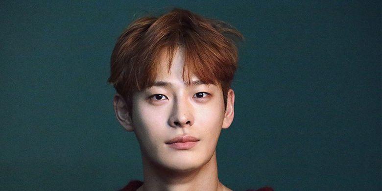 Aktor Korea Selatan Cha In Ha