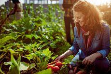 Nikmati Manfaat Berkebun, Rileksasi hingga Tumbuhkan Rasa Peduli