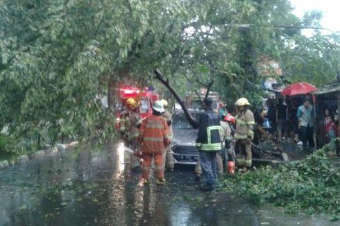 Hujan Lebat, Bandung Dilanda Banjir, Pohon Tumbang Timpa Kendaraan