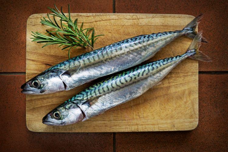 Tips Dari Chef Cara Bedakan Ikan Makarel Dengan Sarden Halaman All Kompas Com