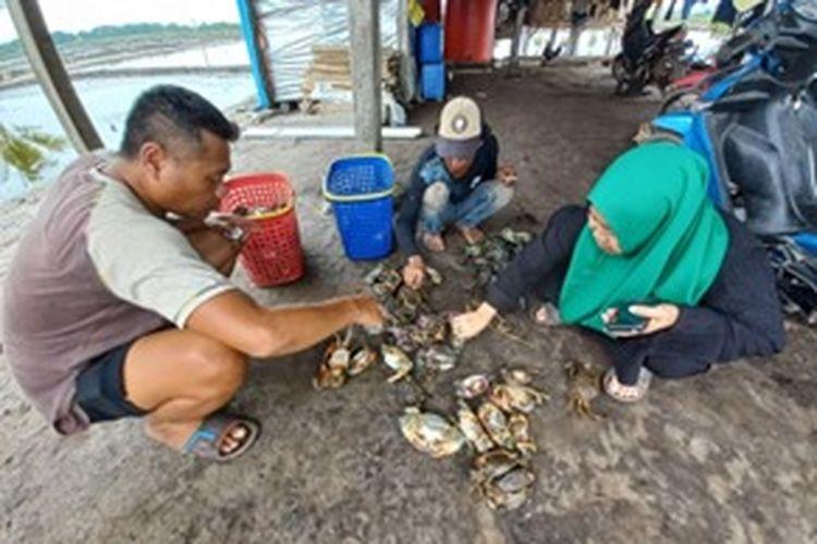 Kelompok pembudidaya kepiting bakau ?Harapan Jaya? di Kabupaten Konawe Utara (Konut), Provinsi Sulawesi Tenggara (Sultra).