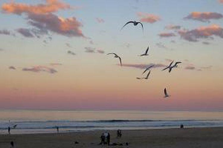Senja di Pantai Surfer Paradise, Gold Coast.