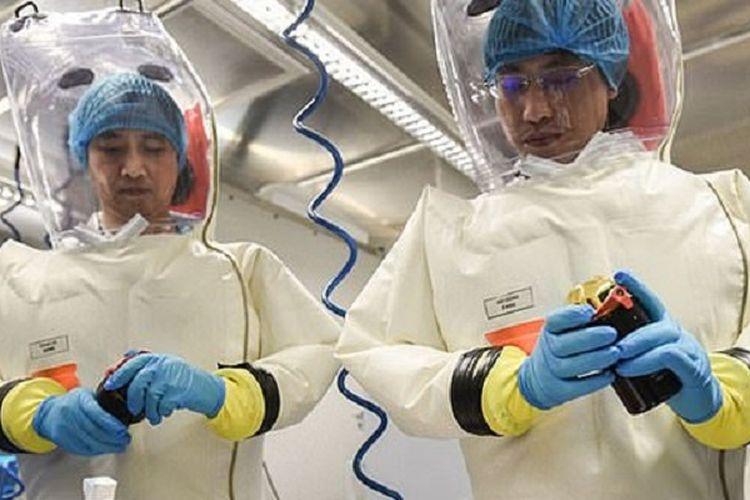 Dua peneliti dari Institut Virologi Wuhan tengah melakukan penelitian. Laboratorium tersebut disebut meneliti kelelawar dari goa yang diduga merupakan asal patogen virus corona.