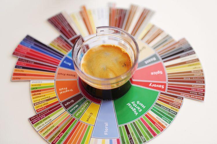 Ilustrasi roda rasa kopi atau coffee flavor wheel.