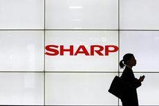 Ditentang Kolega Jepang, Sharp Batal Rangkul Samsung