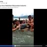 Viral Video Paus Predator Dikira Lumba-Lumba, Dikerumuni dan Dipeluk Warga