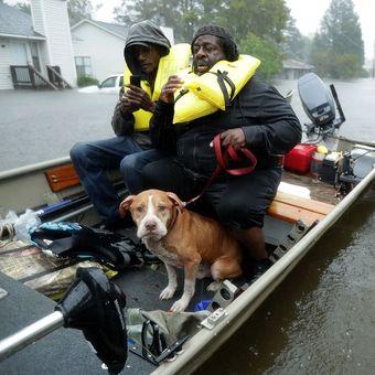 Relawan ketika membantu evakuasi warga beserta hewan peliharaan mereka ketika Badai Florence menerjang kawasan New Bern, Carolina Utara, Jumat (14/9/2018).