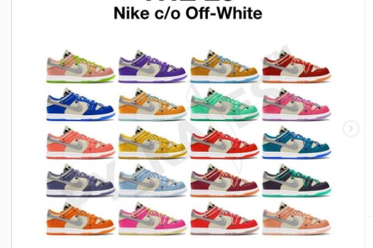 Off-White x Nike Dunk Low The 20