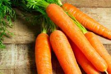 Fakta Nutrisi Wortel yang Menjadikannya Sayuran Gizi Sempurna