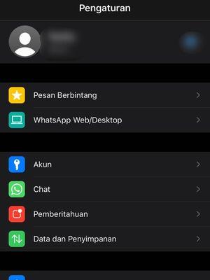 Menu WhatsApp Web/Desktop di iOS