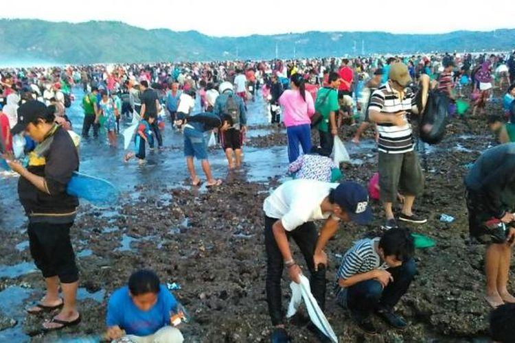 Ribuan warga membanjiri Pantai Seger di Kecamatan Pujut, Kabupaten Lombok Tengah, NTB, Minggu (28/2/2016), untuk merayakan tradisi Bau Nyale.