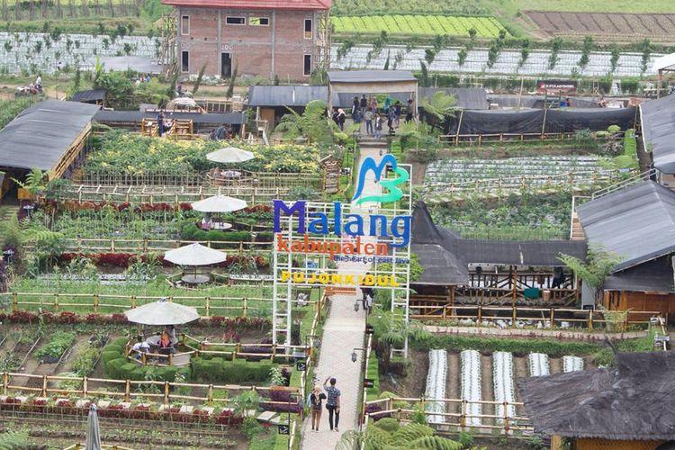 Desa Wisata Pujon Kidul setiap harinya dikunjungi ribuan pengunjung dan berhasil meningkatkan PADes hingga lebih dari Rp 1,3 Miliar pada tahun 2018