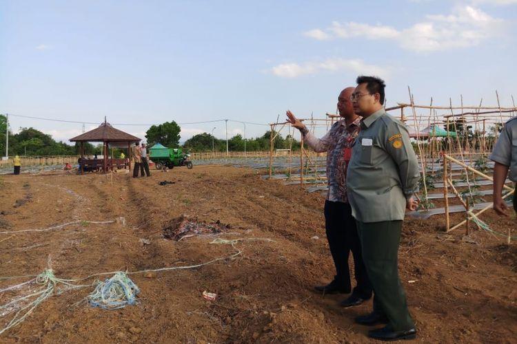 Kementerian Pertanian terus berkoordinasi dengan Pemerintah Provinsi Kalimantan Selatan dalam persiapan peringatan Hari Pangan Sedunia (HPS) ke-38 akan diselenggarakan pada 18-20 Oktober mendatang di Kalimantan Selatan.