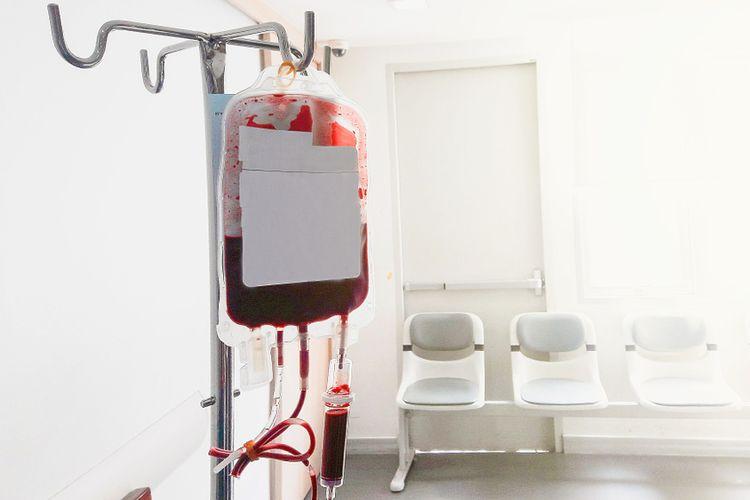 Ilustrasi thalassemia, donor darah.