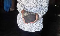 Pelajaran dari Meteorit Kolang yang