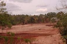 Danau yang Muncul Usai Badai Seroja Kini Mengering, Warga Jadikan Lahan untuk Tanam Sayur