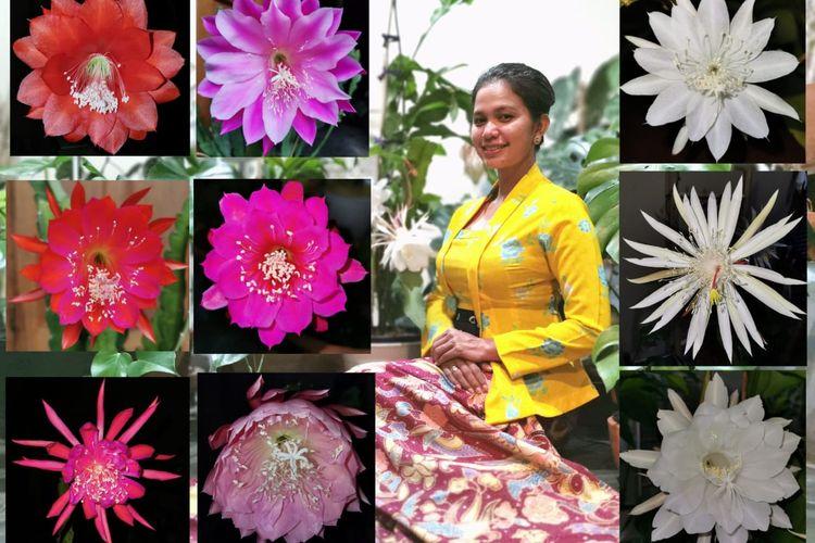 Salah satu bunga yang banyak diburu pecinta tanaman hias, Bunga Wijaya Kusuma.