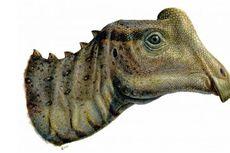 Remaja SMA Temukan Bayi Dinosaurus Mirip Bebek