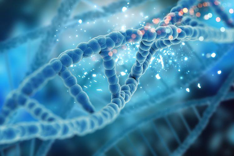 Ilustrasi rekombinasi gen