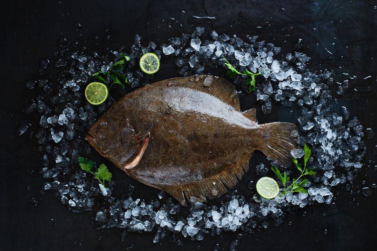 Ikan Turbot, salah satu ikan termahal di dunia yang dilombakan dalam ajang MasterChef Indonesia, Minggu (23/2/2020).
