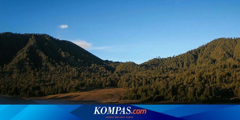 7 Fakta Menarik Tentang Gunung Semeru Yang Wajib Diketahui Halaman All Kompas Com
