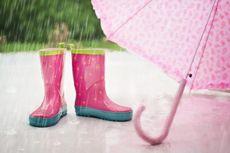 Kapan Musim Hujan Tiba? Berikut Prakiraan BMKG Soal Datangnya Musim Hujan