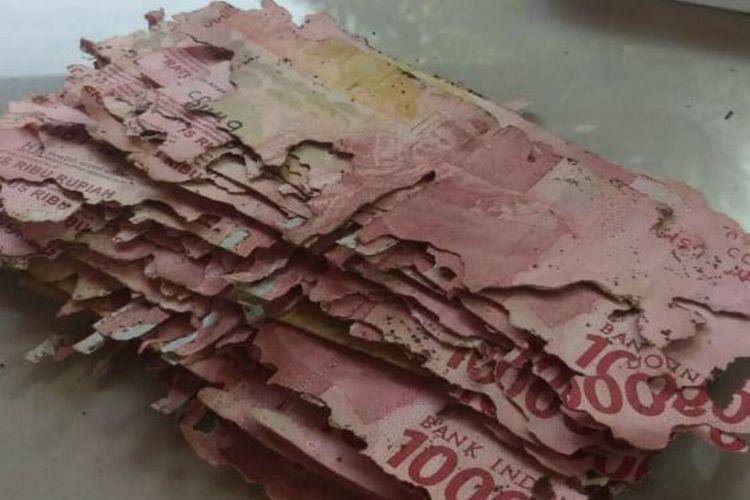 Uang Dimakan Rayap milik Sunardi Warga Kalurahan Putat, Kapanewon Patuk, Gunungkidul