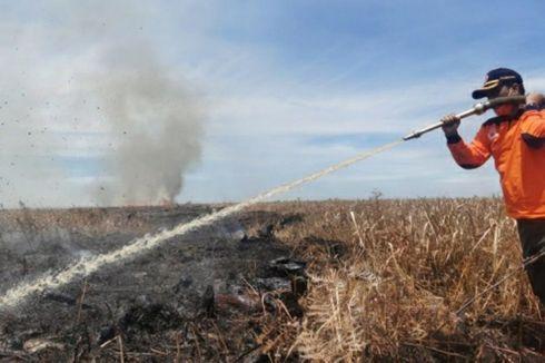 Karhutla di Rokan Hilir Riau, Sudah Lima Hari Api Belum Padam