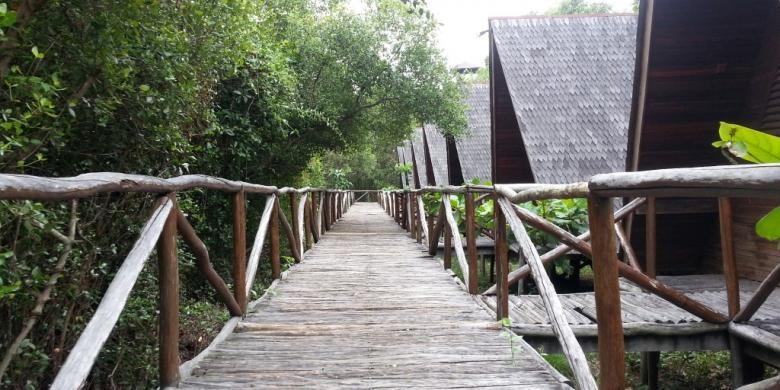 Jalan papan setapak yang mengantarkan pengunjung berkeliling melihat Taman Wisata Alam Angke Kapuk.