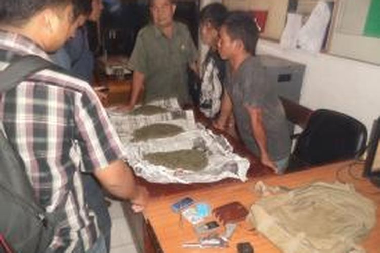 Dua orang ganja di Bengkulu di bekuk jajaran Polda Bengkulu pada Selasa (17/9/2013) dari tangan tersangka di dapat tiga kilogram ganja dan dua pucuk senpi