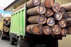 Indonesia Pengekspor Kayu Nomor Satu Dunia, tetapi...