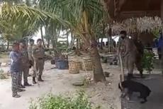 Viral Kisah Canon, Anjing di Aceh Singkil yang Mati Usai Ditangkap Satpol PP