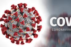 1 Warga Pati Dinyatakan Positif Terjangkit Virus Corona