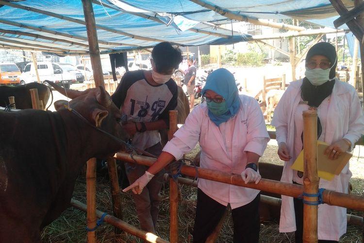 Sudin KPKP Jakarta Timur lakukan pemeriksaan hewan kurban di kawasan Kelurahan Dukuh, Jakarta Timur,  Rabu (8/7/2020)
