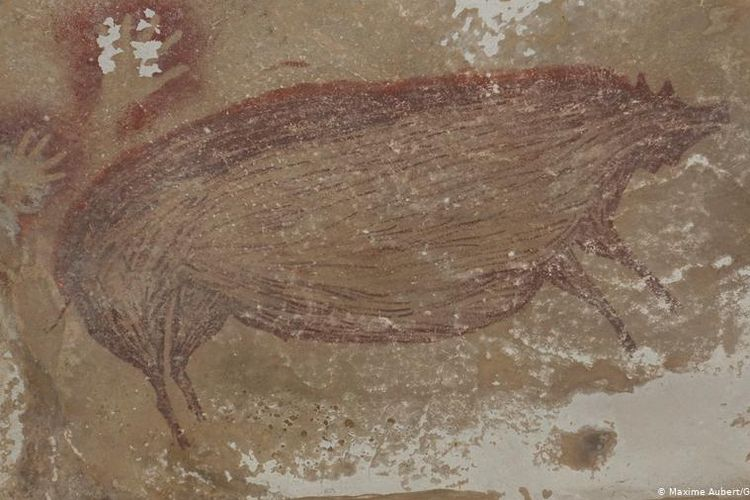 The 45,500 year-old painting of a Sulawesi Warty Pig found on the Leang Tedongnge cave, the Faros-Pangkep karst complex of caves in South Sulawesi