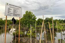 Rehabilitasi Mangrove di Sorong Bantu Perekonomian Warga